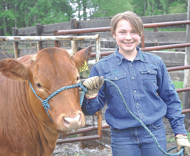 Emily Plante, 11, poses with her Limousin steer Big John. She is Kinuso Lakeside 4-H Club secretary and in her third year of 4-H.