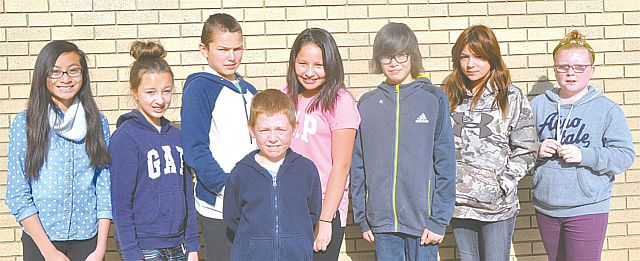 Above are the Grade 5-6 students who recorded perfect scores. In the front row is Liam Roberts. In the back row, left-right, are Daneira Dominguez, Abby Barton, Lukijan Strebchuk, Trista Halcrow, Deshaun Calliou, Sierra Calliou and Abby Arams.