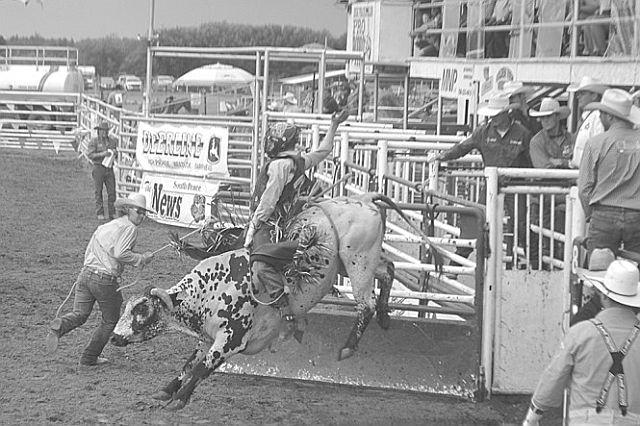 Brock Radford of De Winton, Alta., hangs on tight in bull riding.