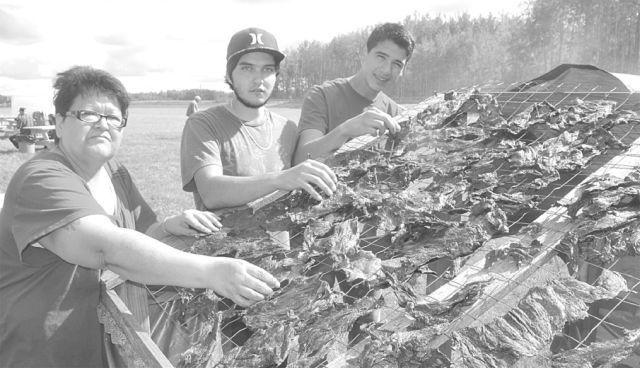 Gail Gladue, left, Quentin Gauchier, centre, and Zane St. Cyr check out the dried deer meat.