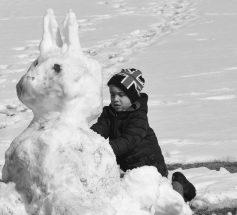 PIC – Snow 'Bunny'