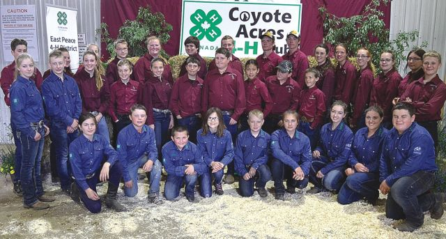East Peace 4-H hands out awards to deserving members