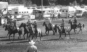 Revived Spruce Point Park Rodeo 'fantastic' – Skrynyk