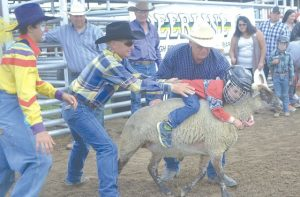 Elks Rodeo notes