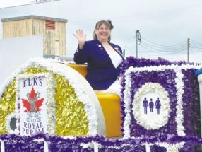 PICs – Yee, haw! What a parade!