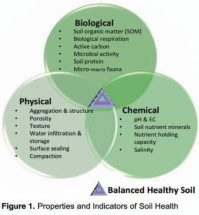Introducing PCBFA's 2018 Soil Health Series