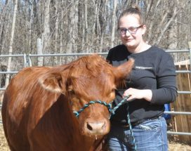 East Peace 4-H members preparing for show and sale