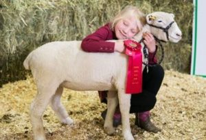 Mason, Verstappen raise top animals in East Peace 4-H District