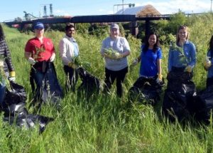 RBC, LSWC join hands to clean riverbank