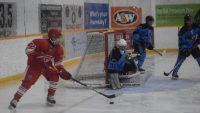 Yellowknee nets 6 in Red Wings' victory