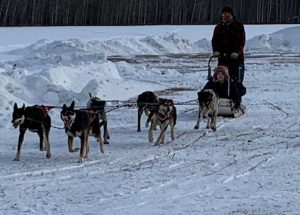 HPE students learn how to be mushers